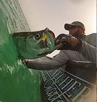 Tarpon fishing with Hogy