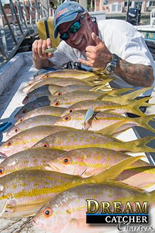 A mess of yellowtail snappers caught with Dream Catcher Charters on the reef in Key West.